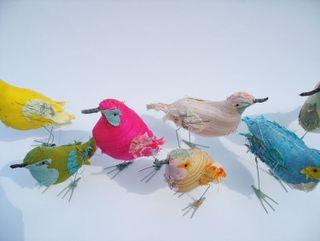 Abigail 5 birds