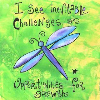 Violette Challenges