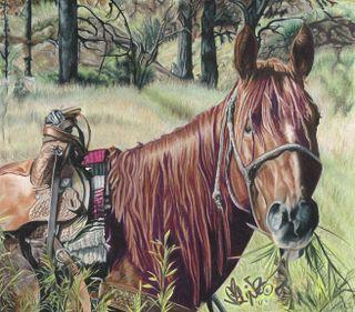 Lindsay Zeltzer Hungry Horse