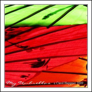 Carol Heppner Umbrellas