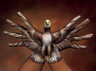 Guido daniele eagle