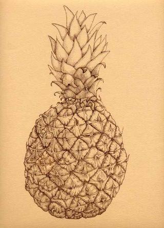 Freddie pineapple copy