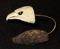 Eagle.head